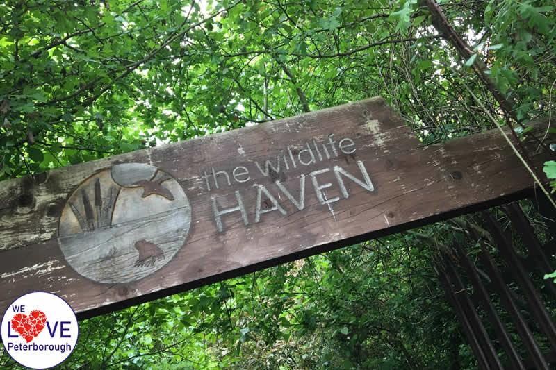 Places to visit in Peterborough: Railworld Wildlife Haven - We Love Peterborough